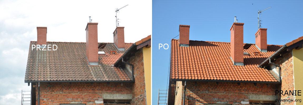 Niemcza Czyszczenie Dachów